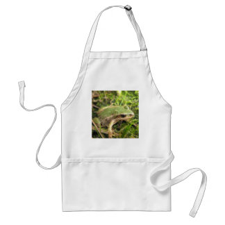 Cooking with a Chorus Tree Frog Standard Apron