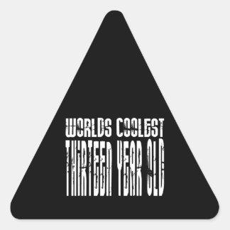 Cool 13th Birthdays Worlds Coolest Thirteen Year Triangle Stickers