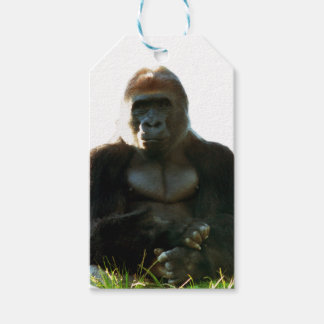 Cool and Funny Gorilla Monkey Animal Gift Tags