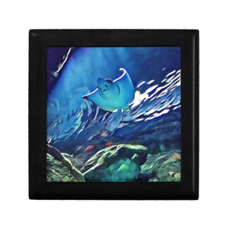 Cool Artistic Underside of Stingray Gift Box