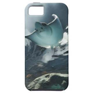 Cool Artistic Underside of Stingray iPhone 5 Cases