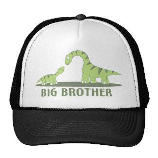 Cool Big Brother Shirt - Dinosaur Theme Cap