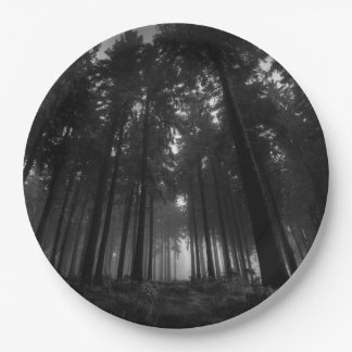 Cool Black and White Forest Fog Silence Gifts 9 Inch Paper Plate