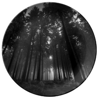 Cool Black and White Forest Fog Silence Gifts Porcelain Plates