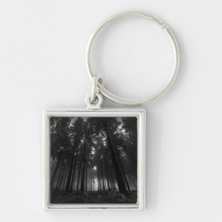 Cool Black and White Forest Fog Silence Gifts Silver-Colored Square Key Ring