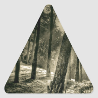 Cool Black and White Forest Sunshine Nature Triangle Sticker