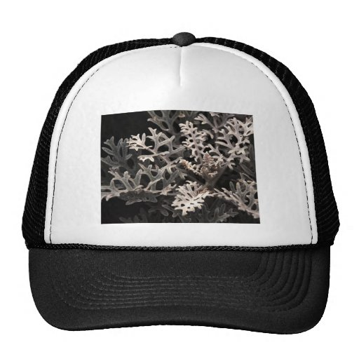 Cool Branching Plant Botanical Trucker Hats