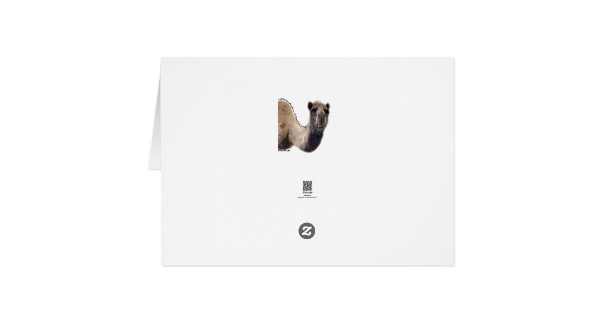 Cool Camel Hump Day Christmas Greeting Card | Zazzle: www.zazzle.com.au/cool_camel_hump_day_christmas_card...