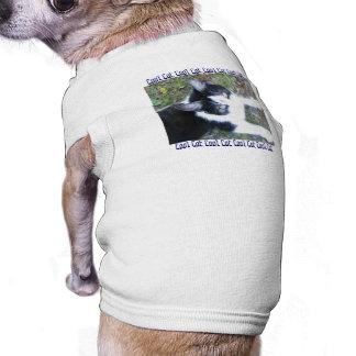 Cool Cat (Boy) Shirt