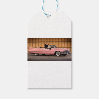 Cool Cat Caddy Gift Tags