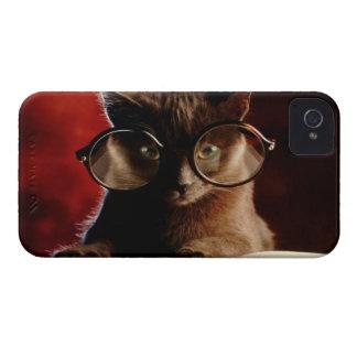 Cool Cat iPhone 4 Cases