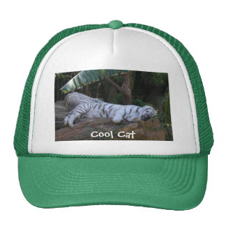 Cool Cat tiger hat