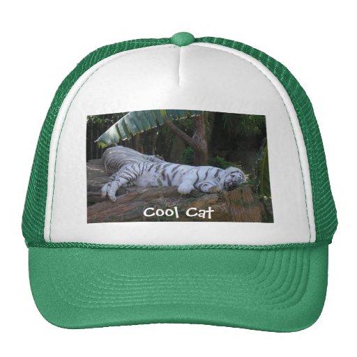 Cool Cat tiger hat