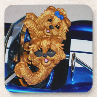 Cool Cat!! Yorkies Yorkshire Terrier  Coaster Set