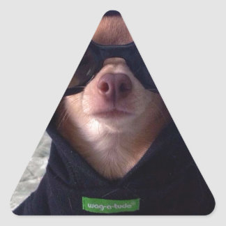 Cool Chihuahua Triangle Sticker