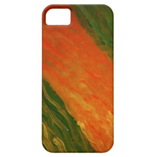 Cool colours iPhone 5 cover