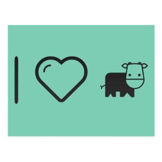Cool Cows Postcard
