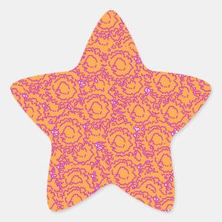 Cool cute girly swirls pink and orange SWIRLS08 Star Sticker