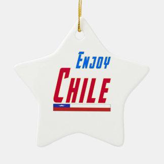 Cool Designs For Chile Ceramic Star Decoration