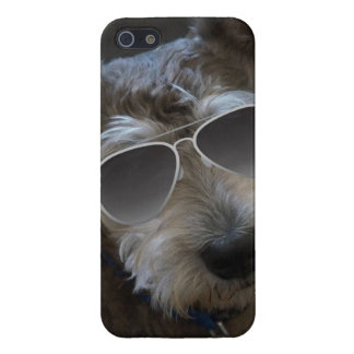 Cool Dog Mini Schnauzer Aviator Iphone 5 Case