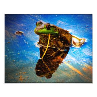 Cool Frog Photo Print