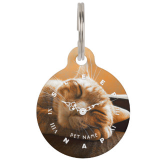 Cool Funny Cat Sleeping And Napping Clock Pet ID Tag