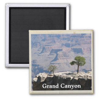 Cool Grand Canyon Magnet! Square Magnet