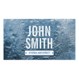 Cool Ice Age System Architect Business Card