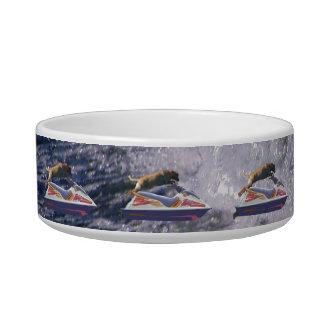 Cool Lab Jumping Waves Bowl
