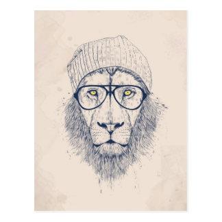 Cool lion postcard