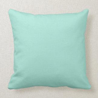 Cool Mint Green Pillows