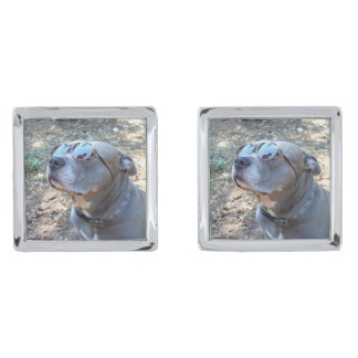 Cool Pitbull Cufflinks Silver Finish Cufflinks
