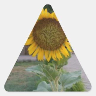 Cool Retro Trendy Hakuna Matata Gifts Sunflower de Triangle Sticker