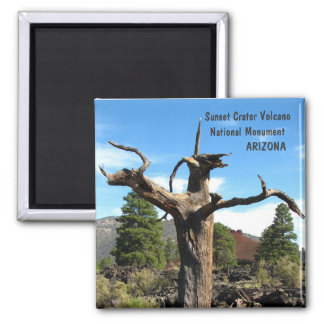 Cool Sunset Crater Volcano Magnet! Magnet