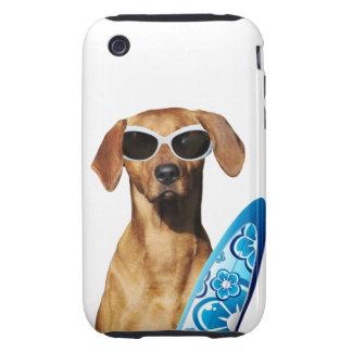 Cool surfer dog, Rhodesian Ridgeback in sunglasses iPhone 3 Tough Covers