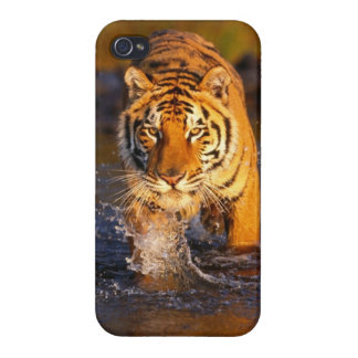 Cool Tiger Phone Case Cover For iPhone 4