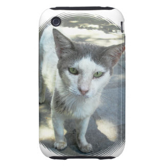 Cool Town Cat Green Eyes Gray Ears iPhone 3G Tough iPhone 3 Tough Case