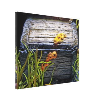 Cool Underwater Treasure Chest Canvas Print