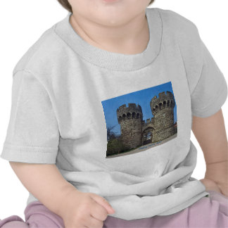 Cooling Castle Gate House Tshirts