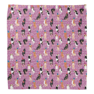Coonhound Birthday (pink) bandana