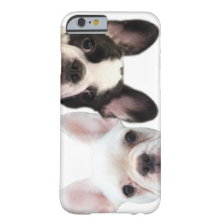 Cooper & Fredrick the Frenchies iPhone / iPad case