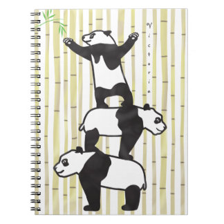 Cooperating pandas notebook