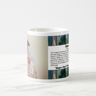 Coopers Hawk Portrait Coffee Mug
