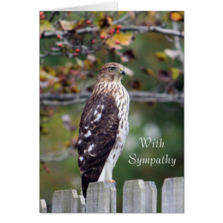 Cooper's Hawk Sympathy Card