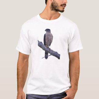 Cooper's Hawk T-Shirt