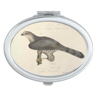 Cooper's Hawk Vanity Mirror
