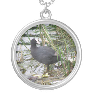 Coot on the Riverbank Necklace