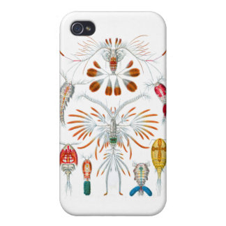Copepods iPhone 4 Case