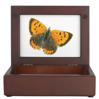 Copper butterfly design jewelry box memory boxes
