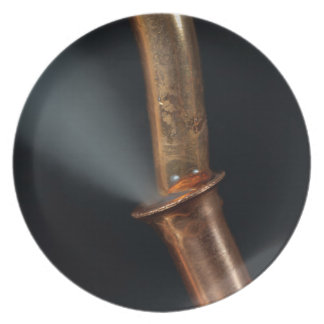 Copper pipe with steam plate